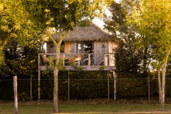 Nuit insolite Zoo boissière du doré_Zoo Pays de la Loire_lodge_pilotis _vue plaine