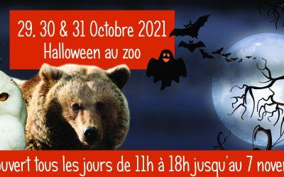 Halloween au zoo, les 29, 30 et 31 octobre 2021